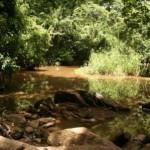 Orisa, Osun, Osun-Osogbo, Osun State, Nigeria, Osun river, orisha, oxum, ochun
