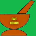 Custom Package of Ifa Ewe Oogun through Divination