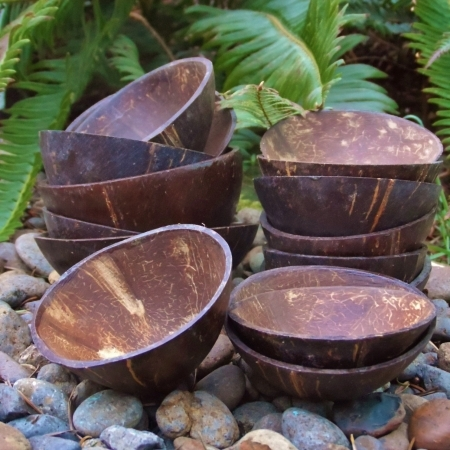 Two coconut shell coite/cuia cups for Jurema drinking, shrine supplies