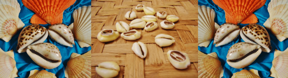 Basket tray of Cowrie Shells and Aje shells